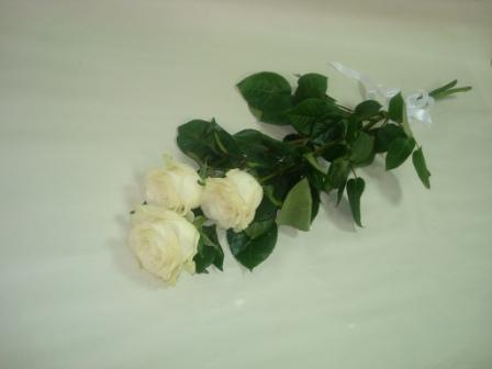 розы в посылке